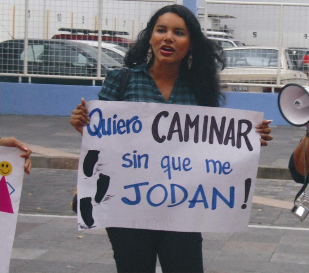 diane-rodriguez-activista-glbt-trans-feminista-quiero-caminar-sin-que-me-jodan-silueta-x (1)
