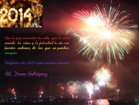Feliz año nuevo 2014 por parte de Diane Rodríguez GLBTI LGBTI TILGB 2013