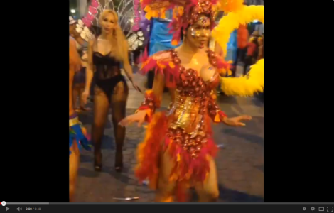 Orgullo y diversidad sexual 2014-activista lgbt trans Diane Rodríguez-Siluetax