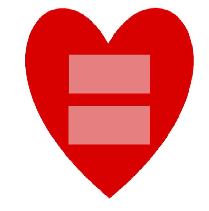 union-civil-igualitaria-ecuador-campac3b1a
