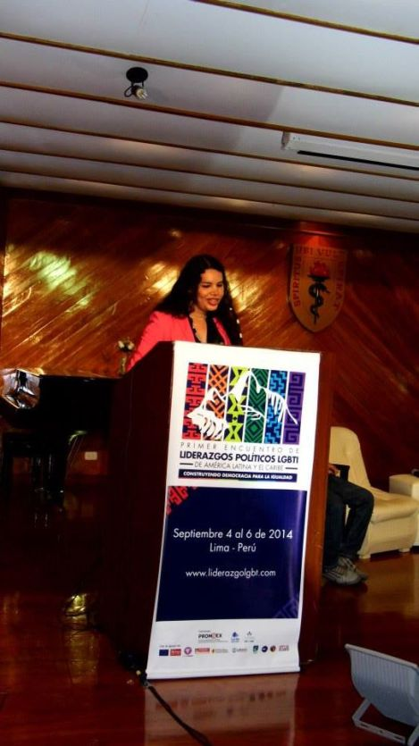 1er Encuentro de líderes LGBTI Políticos de latinoamerica y el Caribe - Diane Rodríguez (12)