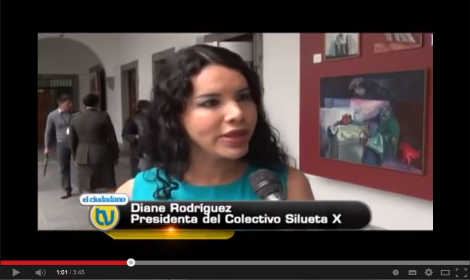 Grupos GLBTI viven cambios fundamentales en defensas de sus derechos-SiluetaX