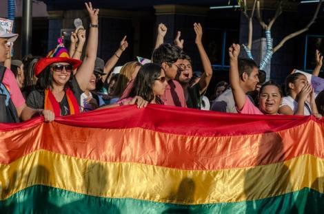 Orgullo LGBT Gay Ecuador Guayaquil 2015 - Asociación Silueta X (11)