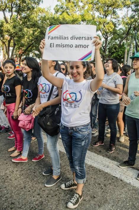 Orgullo LGBT Gay Ecuador Guayaquil 2015 - Asociación Silueta X (130)