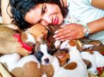 1 Activista trans Diane Marie Rodriguez Zambrano - Ecuador LGBT - transfeminista - Transgénero - MTF Con boxers perros animalista